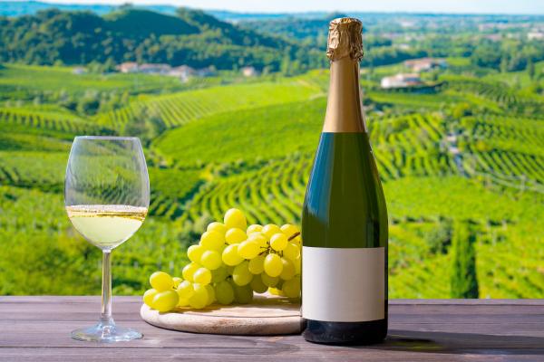 Curso Italia y sus Vinos escuela de negocios de la hospitalidad y alimentación