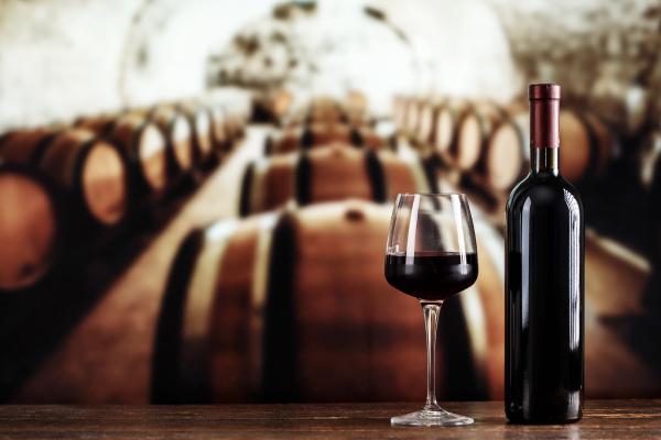 Curso Argentina y Chile y sus vinos escuela de negocios de la hospitalidad y alimentación