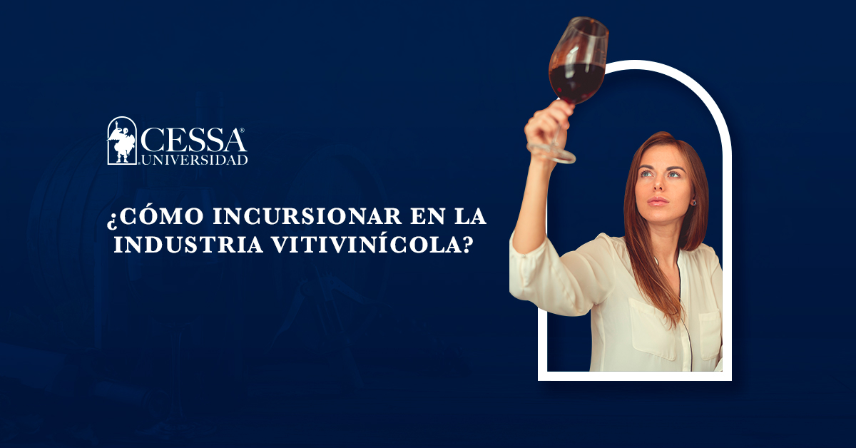 Emprender un negocio relacionado con vinos - CESSA Universidad